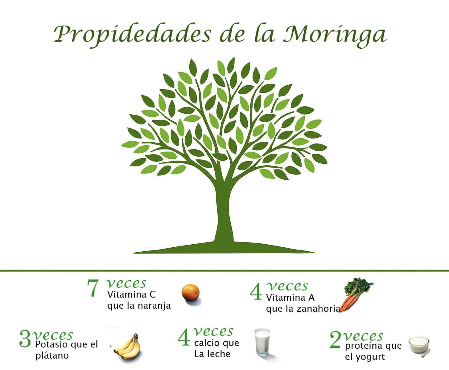 propiedades Moringa