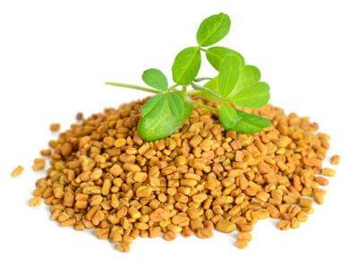 fenogreco medicinal